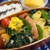 味よし!見た目よし!栄養よし!お弁当におすすめの冷凍食品7選のサムネイル画像