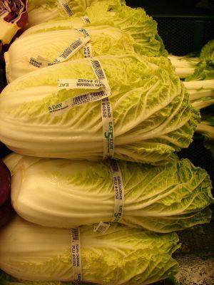 節約しながらたっぷり食べたい!!食べきり!白菜とひき肉のレシピのサムネイル画像