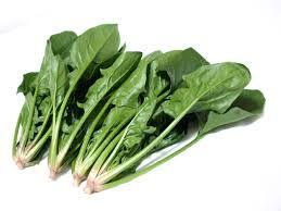 栄養たっぷり緑黄色野菜のほうれん草スープレシピを紹介します。のサムネイル画像