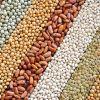 【中東・欧州】レンズ豆のスープの各国の個性がおもしろい!のサムネイル画像