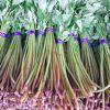 山菜のみずの下処理の方法とみずの簡単で美味しいレシピ5選紹介のサムネイル画像