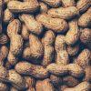 高カロリーの落花生は食べ過ぎに要注意!適量で健康と美容に効果ありのサムネイル画像