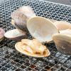ヘルシーな海の幸! 新宿「はまぐり」で、貝料理と未知との遭遇のサムネイル画像