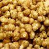 寒くなったら食べよう!食べるインシュリン?菊芋の食べ方!のサムネイル画像